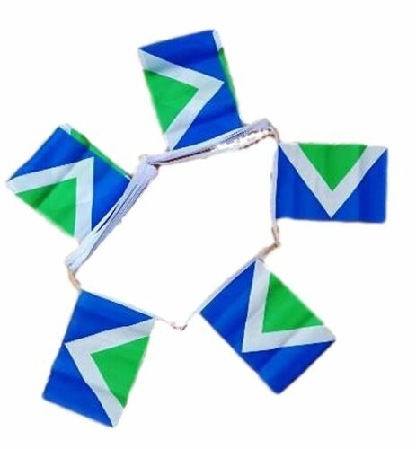 20 flag bunting 6 metre long Vegan