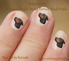 Dobermann perfil Negro, 24 Perro Nail Art pegatinas Doberman Pinscher calcomanías