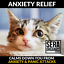 thumbnail 5 - Calming Hemp & Turmeric Oil Dogs & Cats Joint Care Pain Relief Arthritis (50ml)