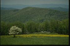 261042 Shenandoah Mountain Landscape A4 Photo Print