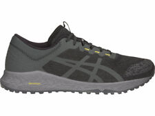 ASICS Men's Alpine XT Running Shoes T828N