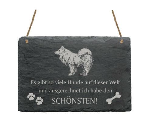 Schiefertafel « SPITZ SCHÖNSTER HUND » Spruch Hunde Dekoration Deko Geschenk