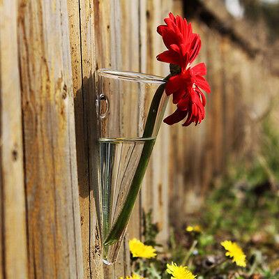 Hanging Clear Glass Taper Wall mount Vase flower vase for home garden decor