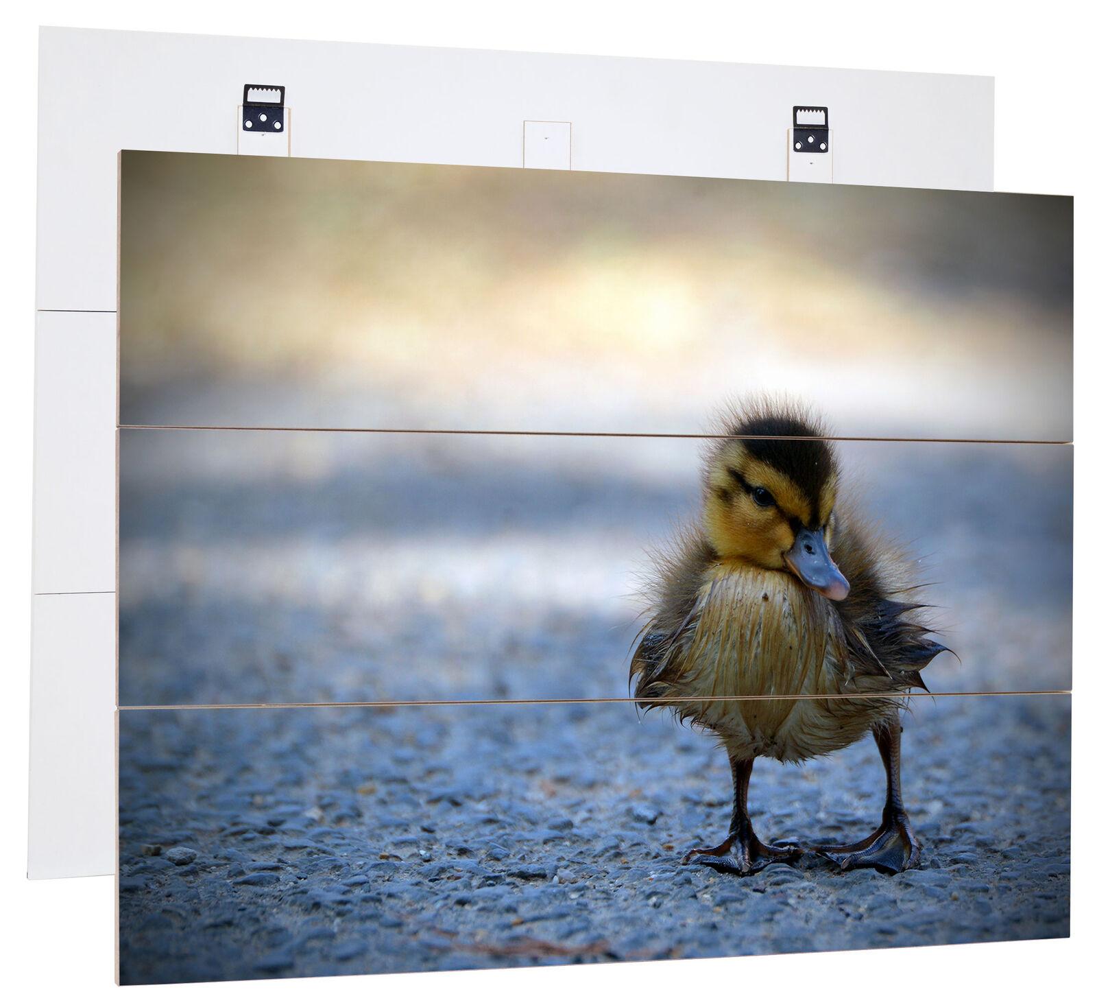 Petit canard poussin route-MDF-panneau bois au bretterlook, décoration