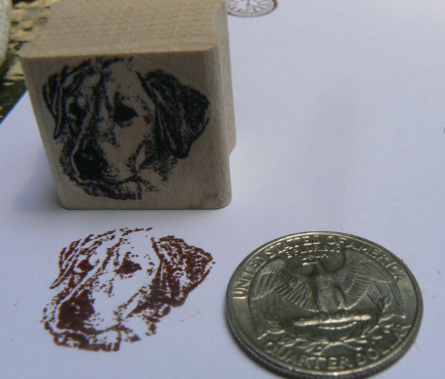 Miniature Labrador dog rubber stamp WM P24