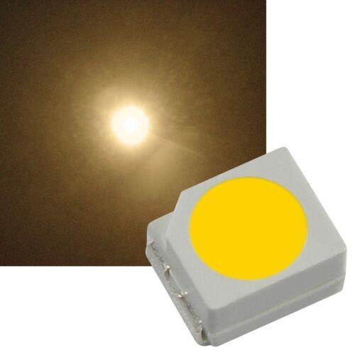 100 Chaud Blanc smd LED plcc 2 3528//Blanc Chaud white Bianco Blanc smds LED Lok