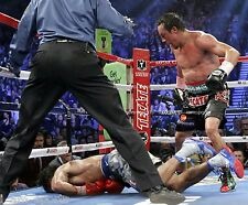 JUAN MANUEL MARQUEZ vs MANNY PACQUIAO #4 BOXING FIGHT KNOCK OUT 8x10 PHOTO