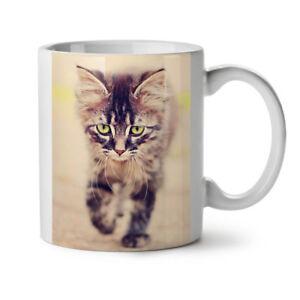 Cute Cat Photo Animal NEW White Tea Coffee Mug 11 oz | Wellcoda