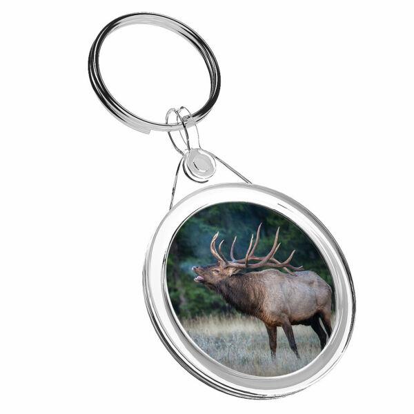 1 Wild Bull Elk X Nord Animali-portachiavi Ir02 Mamma Papà Bambini Compleanno Regalo #16419 Risparmia Il 50-70%