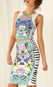 Spring-Themed-Midi-Skirt-S-8-10-Pencil-Floral-Stripe-Multi-Party-Cocktail-Sexy