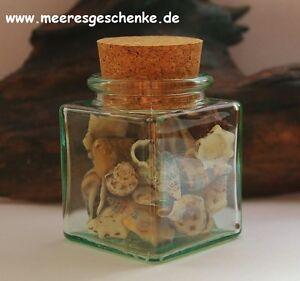 Dekorative Flasche Mit Muscheln & Korkverschluss Ca. 5 X 5 X 7 Cm