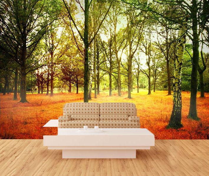 3D Hohe Bäume 35 Fototapeten Wandbild Fototapete BildTapete Familie