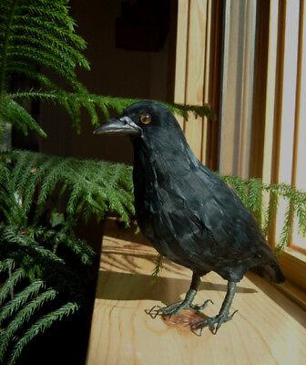 Realistic BLACK CROW HALLOWEEN PROP FURRY ANIMAL Replica ck144 FREE SHIPPING USA