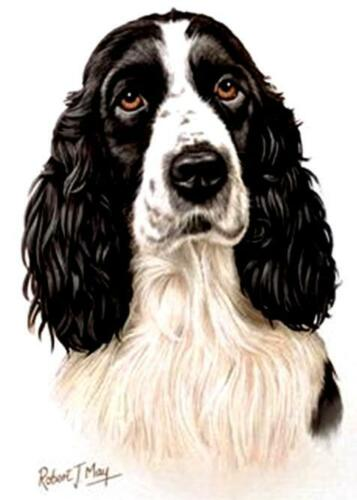 "BLACK Dog Head.16/"" Fabric Panel to Sew ENGLISH SPRINGER  SPANIEL Pic 8/"" x 10/""."