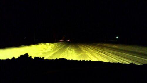 10 X H11 24V 70W Bombillas Halógenas Faro nieve amarillo oro 3000k camión ambiente
