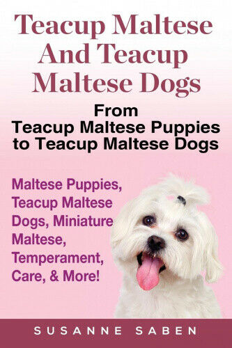 Teacup Maltese And Teacup Maltese Dogs: From Teacup Maltese Puppies to Teacup