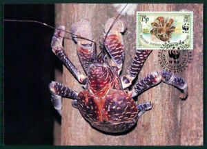 British Territory Mk 1993 Faune Palmendieb Crabe Coconut Crab Maximum Carte En55-afficher Le Titre D'origine Pour Classer En Premier Parmi Les Produits Similaires