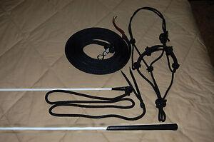 Stiff-Halter-14-039-longe-corde-amp-Handy-Carrot-Stick-Fits-Parelli-Methode-de-formation