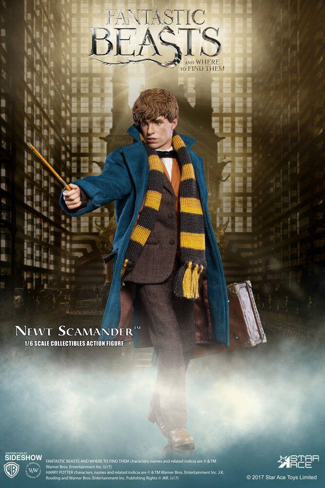 Harry Potter Saga  Animali Fantastici Beasts Newt Scamander 1 6 Figura Sideshow