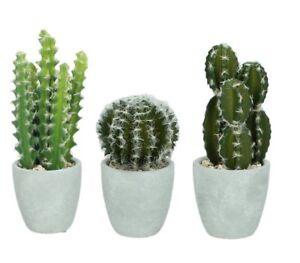 Artificiel Faux Succulent Cactus Plante En Beton Pot Interieur