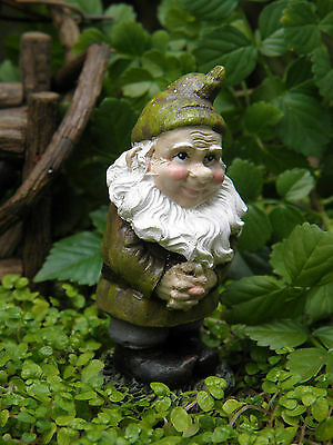 Miniature Dollhouse FAIRY GARDEN ~ Mini Bashful Gnome ~ NEW