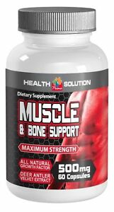 Recovery-From-Traumatic-Injury-amp-Muscle-and-Joint-Healing-500mg-60-Capsules