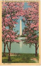 Postcard DC Washington Monument and Cherry Blossoms