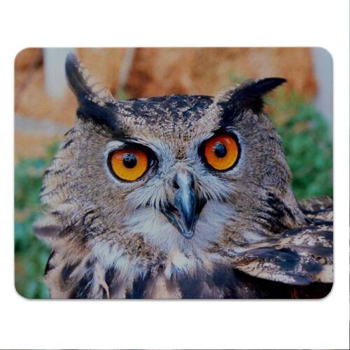 """Moosgummi owl 24x19cm Vogel Mousepad  /""""Eule/"""" Eulen"""