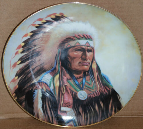 """Strenght of the Sioux"" 1991 Indian Artaffects Plate"