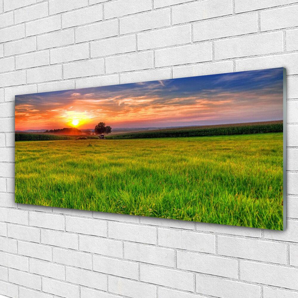 Tableau murale Impression sous verre 125x50 Nature Soleil Prairie