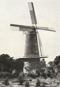 Postcard-Dutch-Windmill-Golden-Gate-Park-San-Francisco-CA-J-C-Bardell-Unposted