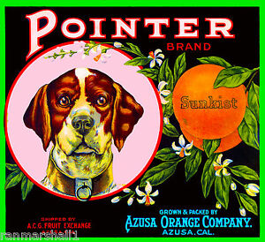 Azusa Los Angeles County Hunter #1 Orange Citrus fruit Crate Label Art Print