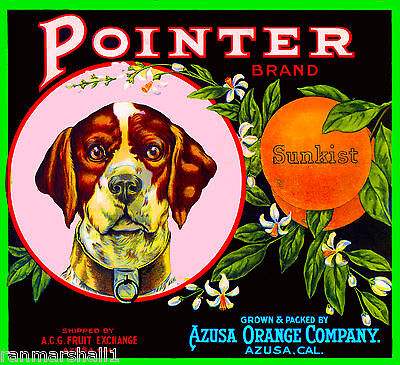 Glendora Hunter Azusa Covina California Orange Citrus Fruit Crate Label Print