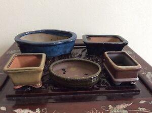 Japanese New Bonsai Pot 5pcs / COLORED / [ 12 ]