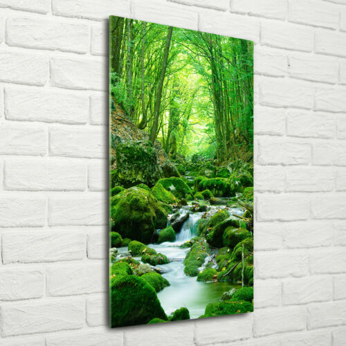 Wandbild Kunst-Druck auf Hart-Glas hochkant 70x140 Bach Wald