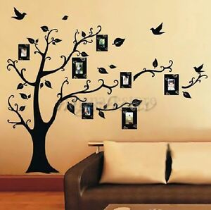 Family Tree Frames For Wall large photo picture frame family tree removable wall sticker home
