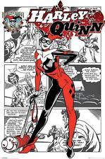 Harley Quinn : Aka Dr Harleen Francis - Maxi Poster 61cm x 91.5cm (new & sealed)