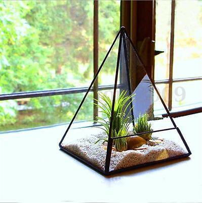 Large Planter Box Tabletop Succulent Plant Irregular Glass Geometric Terrarium