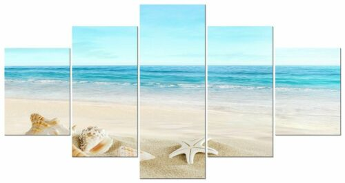 Seashell Beach Starfish Shell 5 panel canvas Wall Art Home Decor Poster Print