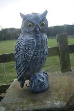 "LIFESIZE 16"" LARGE REALISTIC OWL DECOY - small bird pigeon scarer, crow decoying"
