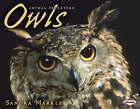Owls by Sandra Markle (Paperback, 2008)
