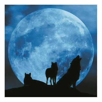 3D Luminous Moon Wall Sticker Glow in the Dark Home Art Decor Kids Room Decal JA