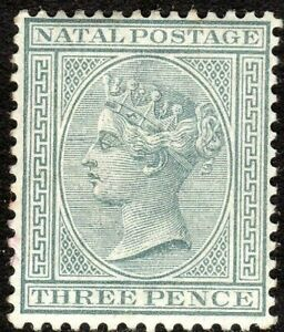 South-Africa-Natal-1882-grey-3d-crown-CA-perf-14-mint-SG101