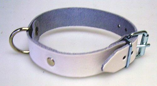 2 correa de piel blanco roll hebilla D-ring 2,0 x 30,0 cm fijación Correa Correa