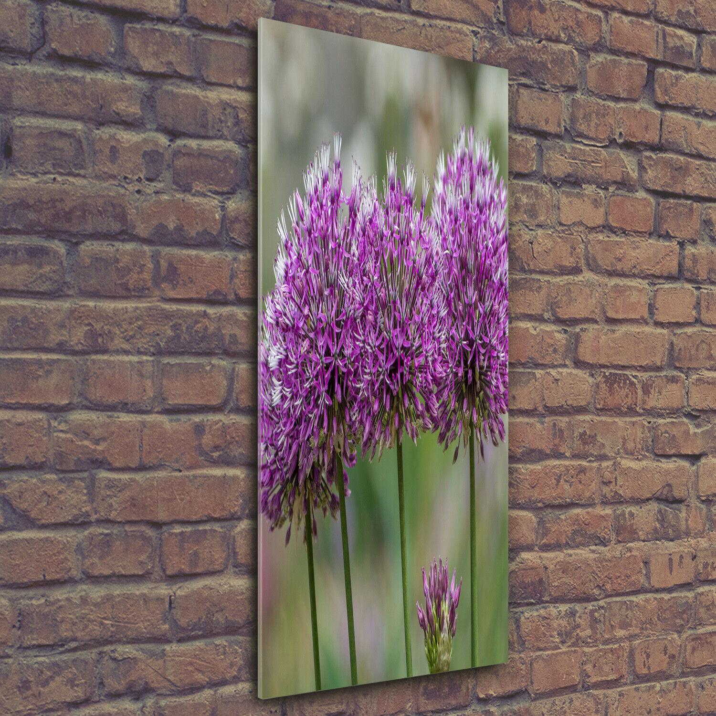 Wand-Bild Kunstdruck aus Acryl-Glas Hochformat 50x125 Knoblauch Blaumen