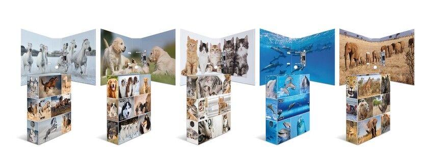 HERMA 7167 10x Motiv-Ordner A4 Animals - Delfine | Wunderbar  | Internationale Wahl  | Outlet Store Online