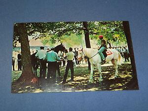 VINTAGE PADDOCK  HORSE RACE TRACK SARATOGA SPRINGS NEW YORK   POSTCARD