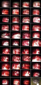 16mm-Film-Yenendi-Dongo-Opferfest-mit-Geisterbeschwoerung-in-Afrika-Nigerbogen