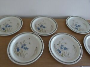 Royal-Doulton-Hill-Top-6-Dinner-Plates