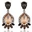1Pair-Brown-Resin-Crystal-Eardrop-Ear-Stud-Elegant-Women-Earring-Fashion-Jewelry thumbnail 1